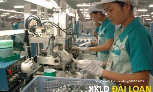 Chia sẻ của một lao động đang làm tại Đài Loan