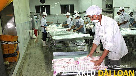 Xuất khẩu lao động Đài Loan tuyển nam đóng gói bột tháng 12/2020