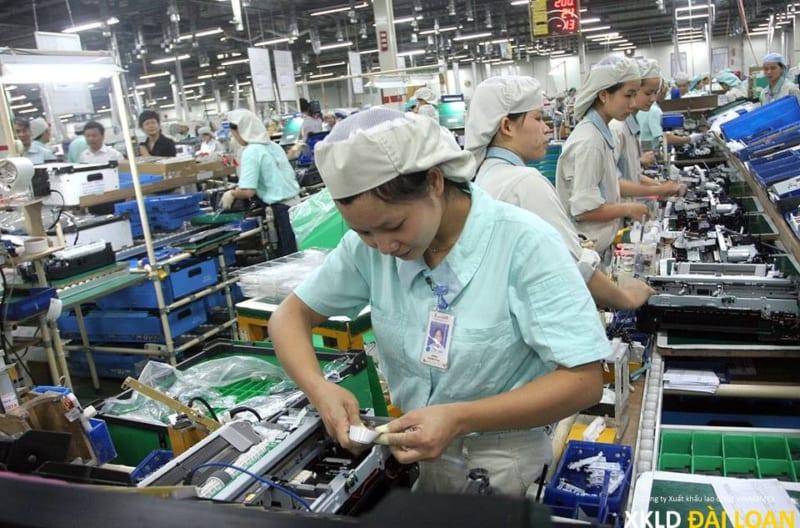 Xuất khẩu lao động Đài Loan tuyển 60 nữ điện tử làm ở Cao Hùng 17