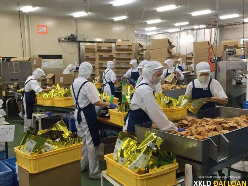 Đơn hàng Xuất khẩu lao động Đài Loan tuyển gấp tháng 11 12