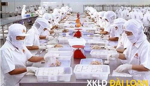 Đơn hàng chế biến thực phẩm đông lạnh Đài Trung tuyển nam